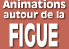 Animations autour de la figue